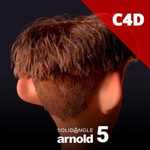 Arnold 5 para Cinema 4D